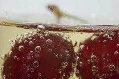 Cereja no champanhe imagens de stock