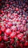 Cereja vermelha foto de stock
