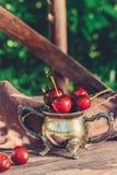Cereja vermelha madura filmada no jardim Fotografia de Stock Royalty Free