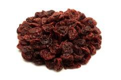 Cerejas ácidas secadas Imagens de Stock