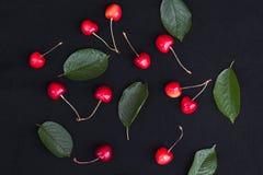 Cerejas alaranjadas com ramos verdes Imagem de Stock