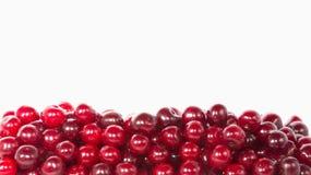Cerejas com gotas da água nelas Imagem de Stock