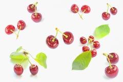 Cerejas de encontro ao fundo branco Foto de Stock