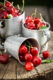 Cerejas doces frescas no coto de madeira velho fotografia de stock