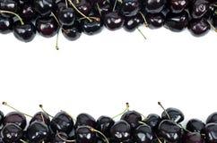 Cerejas doces isoladas em um fundo branco Imagem de Stock Royalty Free