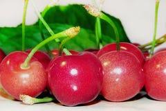 Cerejas doces maduras Imagem de Stock Royalty Free