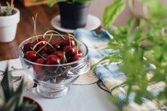 Cerejas ecológicas na bacia de vidro, na tabela Fotografia de Stock Royalty Free