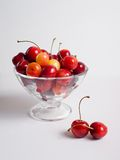 Cerejas em um vaso no fundo branco Fotografia de Stock