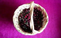Cerejas em uma cesta Fotos de Stock