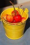 Cerejas em uma cubeta amarela no fundo azul Foto de Stock