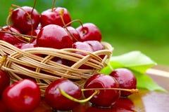 cerejas frescas Imagem de Stock