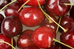 Cerejas frescas com hastes Fotografia de Stock
