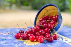 Cerejas frescas da bacia Imagem de Stock Royalty Free