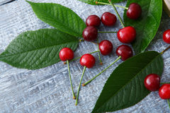 Cerejas frescas doces com as folhas verdes na madeira rústica azul Imagens de Stock Royalty Free