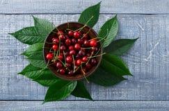 Cerejas frescas doces com as folhas verdes na madeira rústica azul Fotografia de Stock