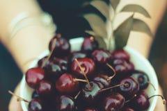 Cerejas frescas em uma bacia foto de stock