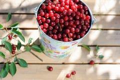 Cerejas frescas maduras em uma cubeta colorida e cerejas maduras com as folhas na tabela de madeira Fotos de Stock