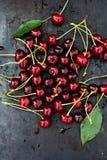 Cerejas frescas na obscuridade Fotografia de Stock Royalty Free