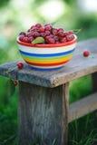 Cerejas frescas na placa da cor na tabela de madeira Foto de Stock