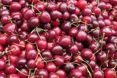 Cerejas frescas no mercado exterior Fotografia de Stock
