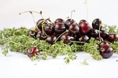 Cerejas frescas separadas Fotografia de Stock Royalty Free