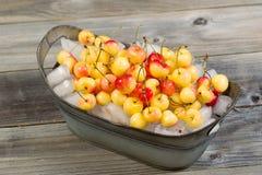 Cerejas inteiras frescas no gelo Imagem de Stock Royalty Free