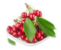 Cerejas maduras frescas Imagens de Stock