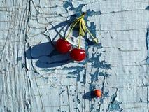 Cerejas maduras vermelhas fotografia de stock royalty free