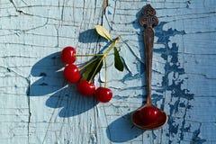 Cerejas maduras vermelhas fotos de stock royalty free