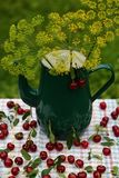 Cerejas maduras vermelhas fotografia de stock
