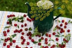 Cerejas maduras vermelhas fotos de stock