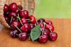 Cerejas maduras vermelhas que derramam a cesta em uma tabela de madeira fotografia de stock royalty free