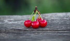 Cerejas no ar livre no fundo da natureza Foto de Stock Royalty Free
