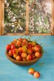 Cerejas no fundo de madeira do macro da tabela Imagem de Stock