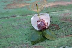 Cerejas no gelo Frutas congeladas Imagem de Stock
