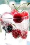Cerejas no vidro com gelo Imagens de Stock Royalty Free