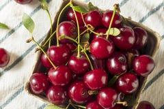 Cerejas orgânicas vermelhas cruas da galdéria fotografia de stock royalty free