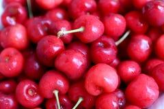 Cerejas saudáveis, suculentas, frescas, orgânicas no fim da bacia de fruto acima Cerejas no fundo Imagens de Stock Royalty Free