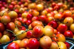Cerejas suculentas no mercado Fotografia de Stock