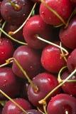 Cerejas vermelhas Fotografia de Stock