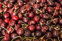 Cerejas vermelhas Fotos de Stock