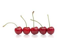 Cerejas vermelhas em uma fileira Fotos de Stock Royalty Free