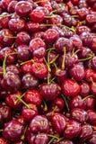 Cerejas vermelhas frescas fotografia de stock