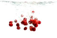 Cerejas vermelhas na água Fotografia de Stock