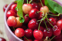 Cerejas vermelhas na bacia cor-de-rosa no fundo de madeira Foto de Stock Royalty Free