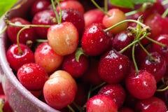 Cerejas vermelhas na bacia cor-de-rosa no fundo de madeira Imagens de Stock