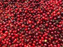 Cerejas vermelhas - tenda do mercado Foto de Stock Royalty Free