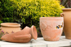 Ceremic jug in garden Stock Photography