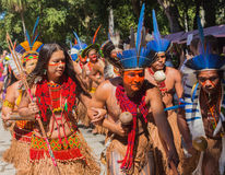 Ceremoni av infödda brasilianska indier Royaltyfria Foton