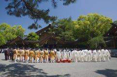 Ceremoni i den Atsuta relikskrin, Nagoya, Japan royaltyfria bilder